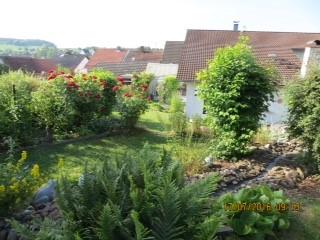 """Eine """"schöne farbige Gartenecke aus unserem Garten"""" , sandten uns Willi und Gudrun Heffner aus Buchen /Hettinge zu."""