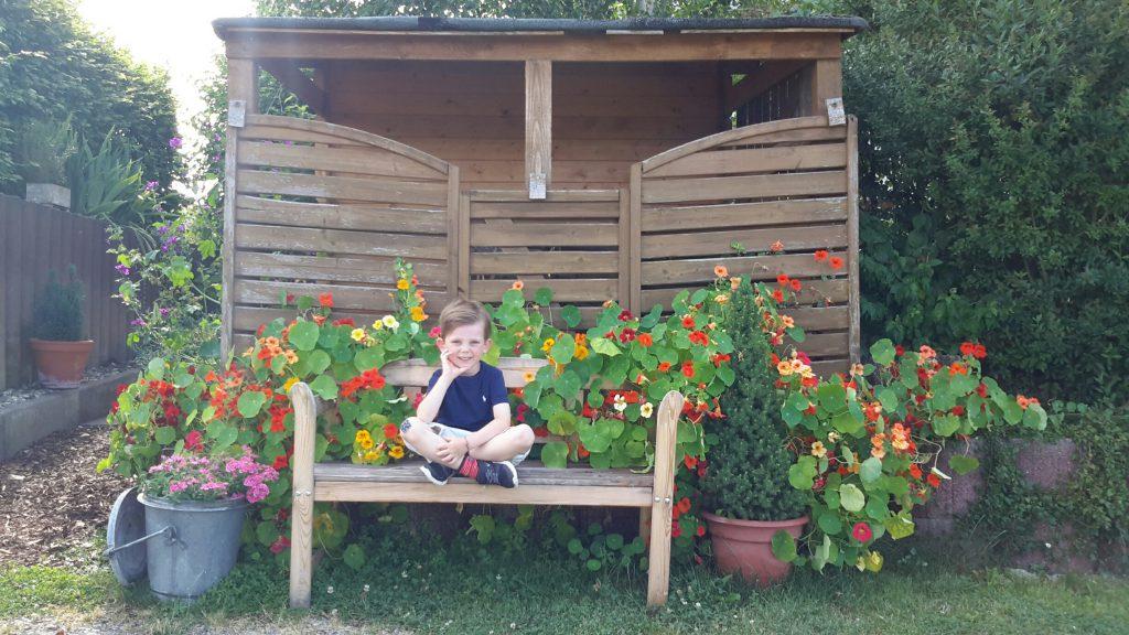 """Ben war zu Besuch bei seinen Großeltern in Tauberbischofsheim. Oma Marianne Grodde schreibt in seinem Namen: """"Ja da staunt ihr, was aus kleinen Samenkörner werden kann.Im April habe ich bei meinen Großeltern die Samen eingeplanzt und das ist daraus entstanden. Kapuziner Kresse und die kann man auch noch essen."""""""
