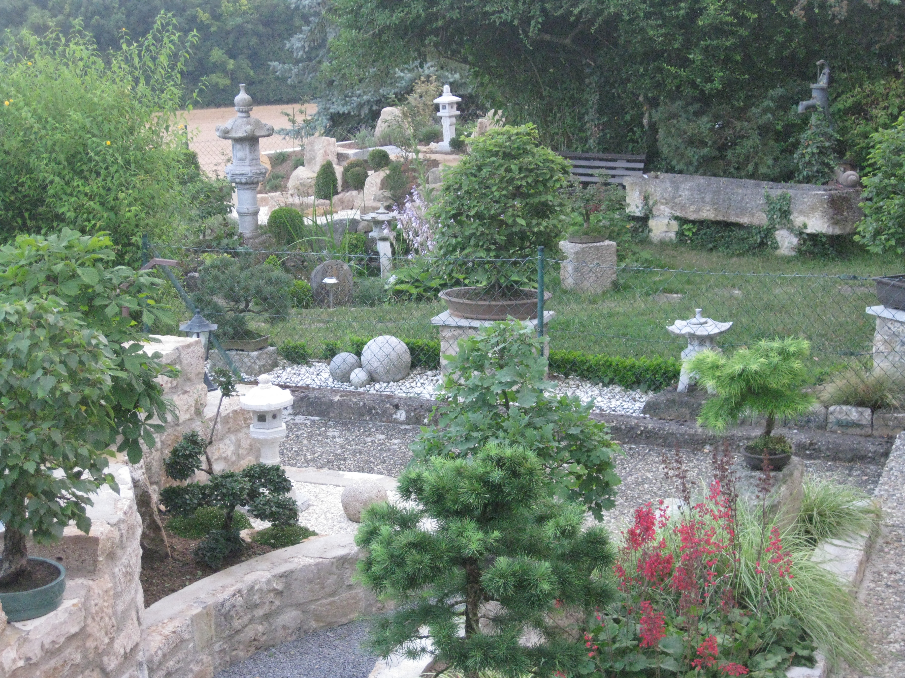 Garten, Foto, Sieger, Aktion